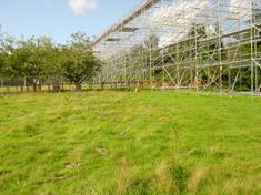 scaffold_01
